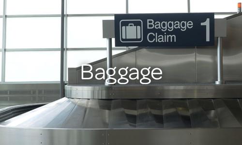 DLH_Sidebar_Baggage2